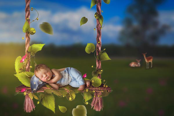 Newborn Swing